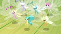 Twirly addressing Fluttershy S4E16