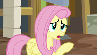 "Fluttershy ""it's, uh, not ready"" S7E5"