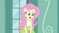"""Fluttershy """"are you sure we need"""" EG3.png"""