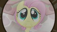 Fluttershy in Dr. Fauna's door peephole S7E5