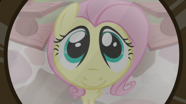 File:Fluttershy in Dr. Fauna's door peephole S7E5.png