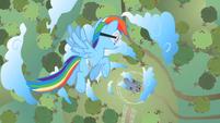 Rainbow ready to destroy barn S2E03