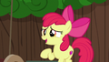 Apple Bloom suggesting a cart redesign S6E14.png