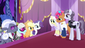 Contestant ponies waiting for the judges' votes S7E9.png