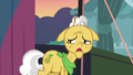 Grand Pear overcome with guilt S7E13.png