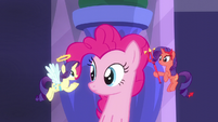 Angel Rarity tells Pinkie to raise the roof S6E9