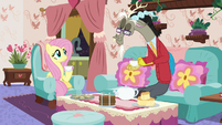 """Fluttershy and Discord's """"normal"""" tea party S7E12"""