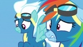 Rainbow Dash biting her lower lip in humiliation S7E7.png