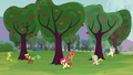 The fillies running around trees S3E08.png
