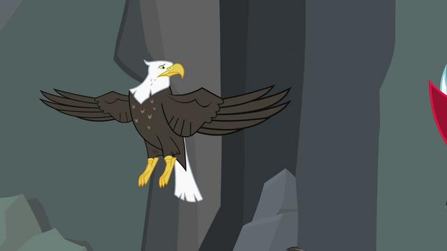 File:Bald eagle not headless S2E7.png