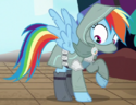 Rainbow Dash thief ID S6E17