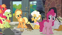 Applejack 'Well, I know for sure!' S4E09