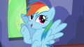 "Rainbow Dash ""you're telling me"" S6E24.png"