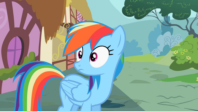 File:Rainbow Dash what was that S2E8.png