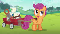 Scootaloo wants to win most creative S6E14