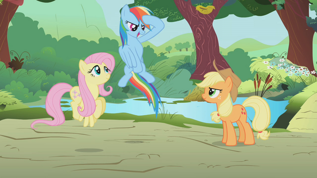 File:Rainbow Dash salute S1E10.png