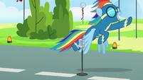 Rainbow Dash takes off into the sky S7E7