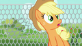 Applejack looking off-screen in surprise S6E10.png