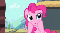 Pinkie Pie 'Two sisters-in-law bonding' S4E11