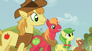 Raise This Barn Big Mac and Braeburn S03E08.png