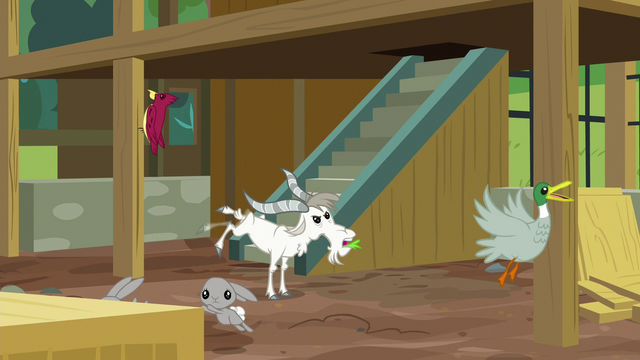 File:Animals in an uproar inside unfinished sanctuary S7E5.png