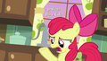 "Apple Bloom ""what's the big deal?"" S7E13.png"
