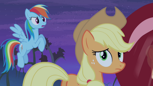 File:Rainbow and Applejack see Flutterbat closing in S4E07.png