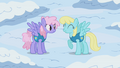 Rainbowshine and Sassaflash S1E11.png