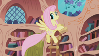 Fluttershy doing some Spring cleaning in Summer S1E03