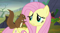 Fluttershy getting concerned as she listens S5E23