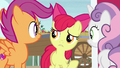 "Apple Bloom ""time like what?"" S7E8.png"