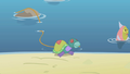 Is that a real turtle S1E5.png