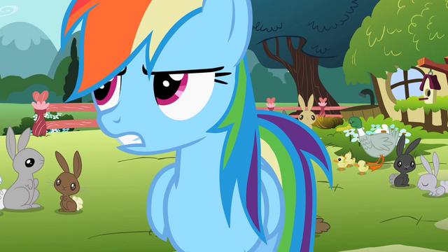 File:Rainbow Dash 'like I was saying' S2E07.png