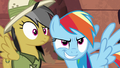 Daring Do confused; Rainbow Dash smirking S6E13.png