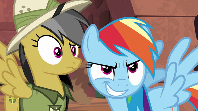 File:Daring Do confused; Rainbow Dash smirking S6E13.png