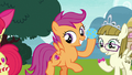Scootaloo enticing Ripley with bouncy ball S7E6.png