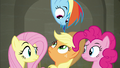 Fluttershy, Dash, AJ, and Pinkie exchange confused glances S6E9.png