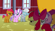 Babs Seed,Diamond Tiara,Silver Spoon and Cutie Mark Crusaders S3E04.png