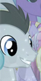 Lucky Clover Crystal Pony ID S4E05.png