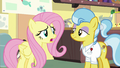 Fluttershy asks Dr. Fauna what happened S7E5.png