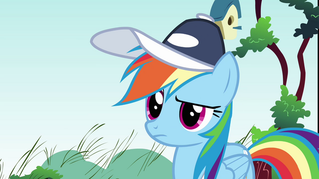 File:Rainbow Dash what happened S2E22.png