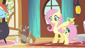 Fluttershy have a little snack S3E13.png