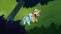 Rainbow walking with Daring Do S4E04