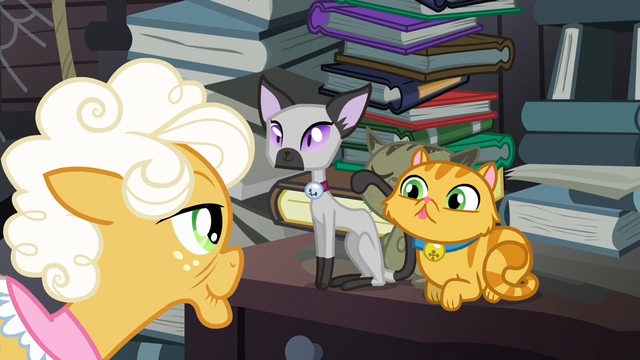 File:Goldie walking towards two cats S4E09.png