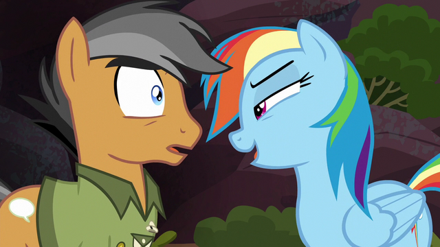 "File:Rainbow ""you might even think it was unrealistic"" S6E13.png"