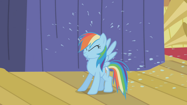 File:Rainbow Dash pelted with rain water S1E06.png