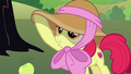 "Apple Bloom ""all those pretty outfits!"" S7E9.png"