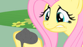 Fluttershy holding Philomena's ashes S1E22.png
