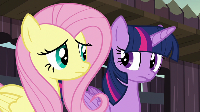 File:Twilight and Fluttershy listen to Big Daddy McColt S5E23.png