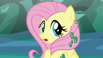Fluttershy looking back at Discord S6E26
